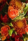 发光2秋天的花束橙色 免版税库存照片