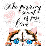 发出愉快的声音的声音是纯净的爱,手拉的卡片,在猫恋人和印刷设计的书法诱导行情上写字 免版税库存图片