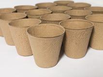 发动罐的种子 免版税库存照片