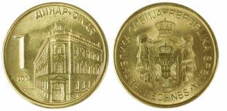 发单第纳尔第纳尔五jovanovic纵向塞尔维亚人slobodan一千 免版税库存照片