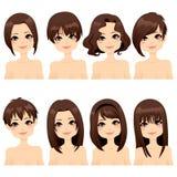 发型方式收集 库存图片