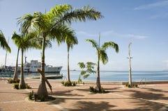 发展端口西班牙特立尼达江边 免版税库存照片