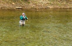 发布鳟鱼的渔夫回到罗阿诺克河,弗吉尼亚,美国 图库摄影