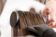 头发干燥 库存图片