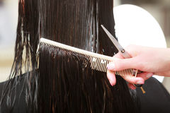 发式专家切口头发理发美容院的妇女客户 库存图片