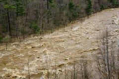 发怒的急流- 2的看法在Maury河的 免版税库存图片