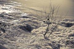 发怒的水和黑暗-洪水在几天洪流以后 免版税库存图片