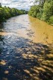 发怒的罗阿诺克河- 3 免版税库存图片
