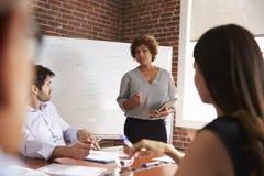 发成熟的女实业家会议室言 免版税库存照片