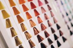 头发样品用头发颜色不同的树荫的  免版税库存照片