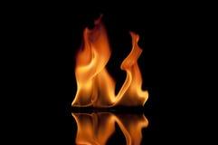 发火焰橙色火焰 库存照片