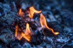 发火焰煤炭的细节 库存照片