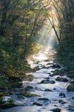 发烟性冷早晨山的河 库存照片