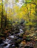 发烟性山小河在秋天 库存照片