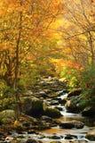 发烟性山的一条河是活与颜色 库存照片