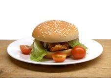 发牢骚汉堡用沙拉和小蕃茄在板材 库存照片