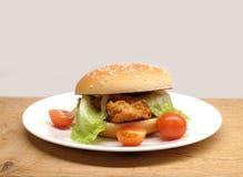 发牢骚汉堡用沙拉和小蕃茄在板材 库存图片