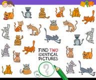 发现两张孩子的相同猫图片比赛 向量例证