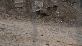 发现地面,都市发展的大工业挖掘机 运转在工地工作的推土机瓢 股票录像