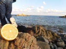 发现您的limon 免版税库存图片