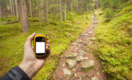 发现正确的位置在森林通过gps 免版税图库摄影
