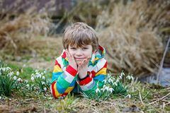 发现第一春天的逗人喜爱的白肤金发的学龄前孩子男孩开花,美好的snowdrops 免版税库存图片