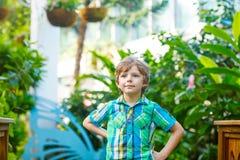 发现花和蝴蝶的小白肤金发的学龄前孩子男孩在植物园 免版税库存照片