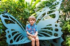 发现花和蝴蝶的小白肤金发的学龄前孩子男孩在植物园 免版税库存图片