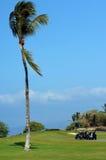 发球区域的下午夏威夷 库存图片