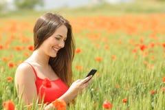 发短信在一个五颜六色的领域的一个巧妙的电话的女孩 库存图片