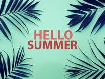发短信给你好夏天和热带叶子 库存图片