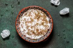 发芽水芹沙拉种子 免版税库存照片