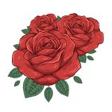 发芽玫瑰 也corel凹道例证向量 库存例证