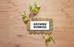 发芽生长在与木背景挽救金钱概念的堆硬币 免版税库存照片