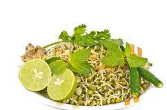 发芽的种子沙拉 免版税库存图片