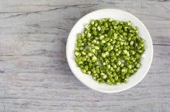 发芽的绿豆堆在白色板材的 免版税库存图片