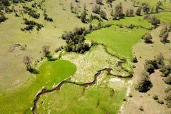 发表Zlatibor山和Crni Rzav小河的看法 免版税库存图片