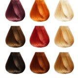 头发调色板。彩色组 图库摄影
