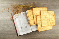 发酵的硬面犹太逾越节面包torah 免版税图库摄影