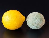 发霉和健康柠檬 免版税图库摄影