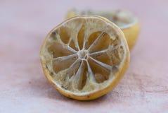 发霉干的柠檬 免版税图库摄影