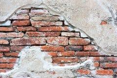 发霉的砖墙 免版税库存图片