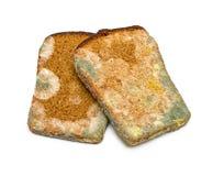 发霉的黑麦面包 图库摄影