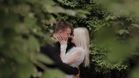 取暖在绿色灌木的分支的愉快的爱恋的夫妇 股票录像