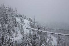 取消雪从吊桥 库存图片