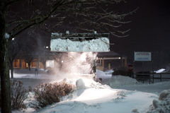 取消雪的美洲野猫 免版税库存图片