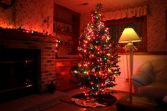 受欢迎的家庭圣诞树 库存图片
