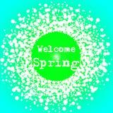 受欢迎的春天字法印刷术卡片 库存照片