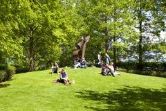 变冷在绿色公园的小温 免版税图库摄影