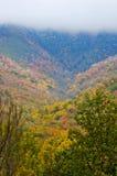 变成冬天的秋天在大烟山 免版税图库摄影